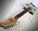 NES Guitar - Rosewood - Single Coil